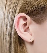 Поколотые уши
