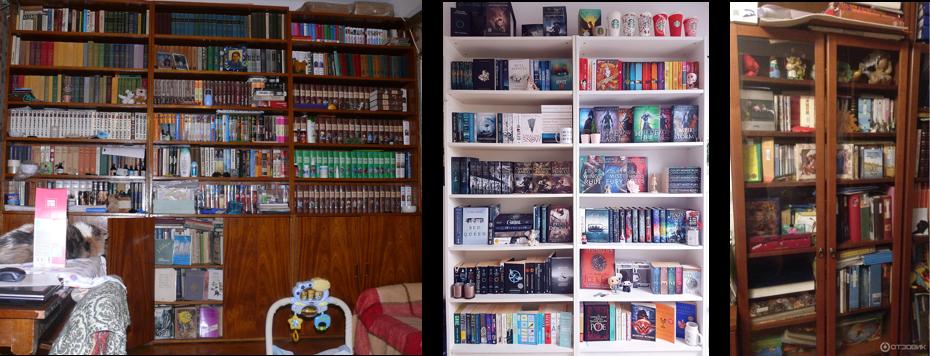 Стеллажи с книгами в интерьере