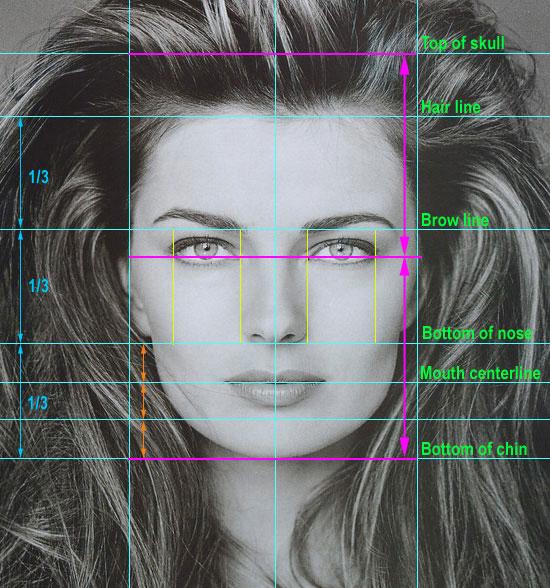 Пропорции красивого женского лица
